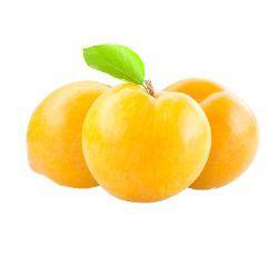 Βανίλιες Κίτρινες